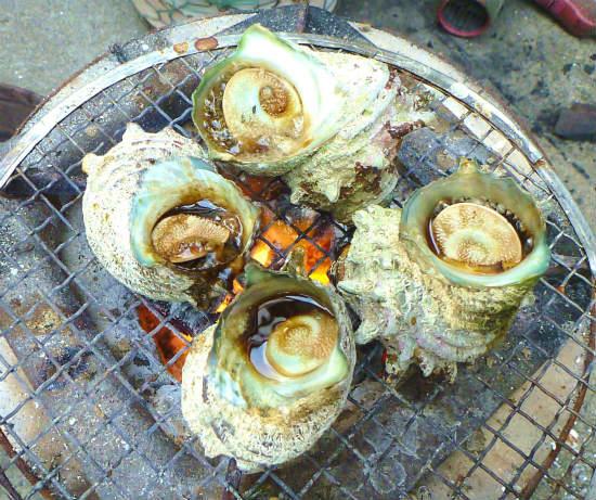 2013.08.24サザエのつぼ焼き