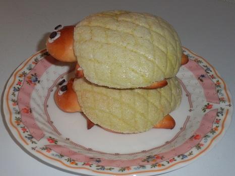 カメのパン2