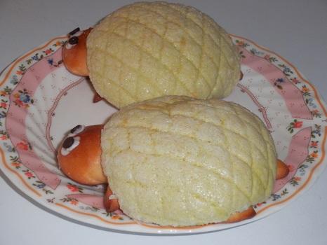 カメのパン