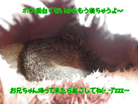 fwtX9zSQZXTwnZ11389510532_1389510795.jpg