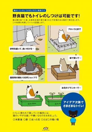 accblog3.jpg