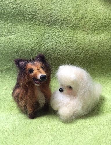 羊毛めっちゃん2