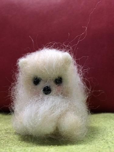 羊毛めっちゃん1