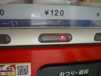 IMGP7856.jpg