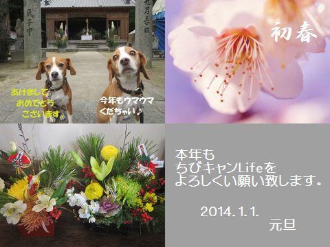 2014、新年挨拶ブログ