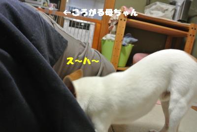 20130712+016_convert_20130712104937.jpg