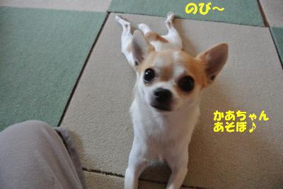 20130722+007_convert_20130722094137.jpg