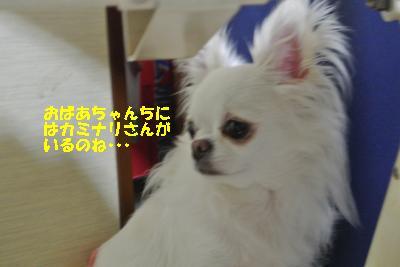 20130728+003_convert_20130728160332.jpg
