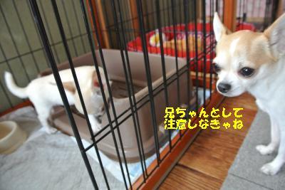 20131013+036_convert_20131013161505.jpg