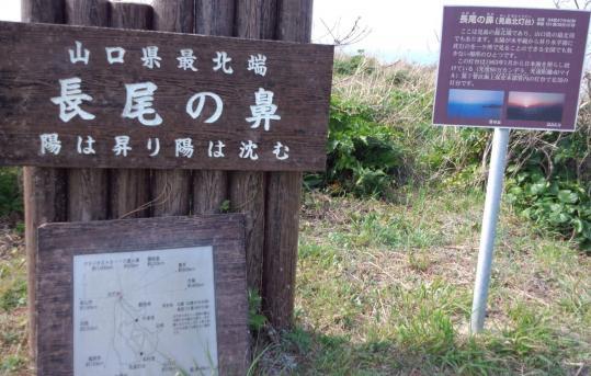 見島旅行5