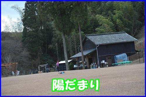 DSC_2431_201401062001359ba.jpg
