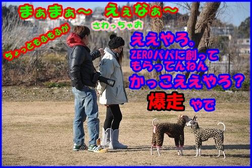 DSC_2555_2014011422214753b.jpg