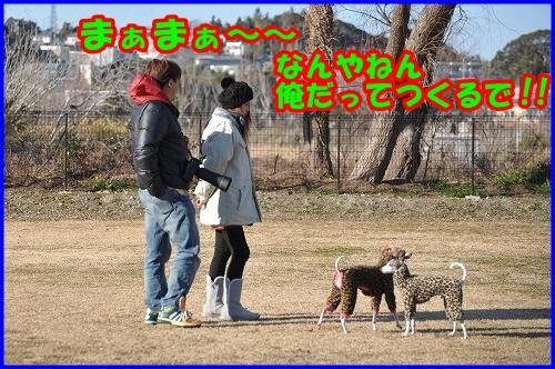 DSC_2556_2014011422214805e.jpg