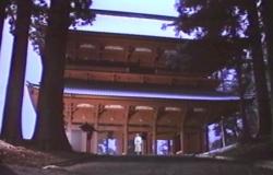 高野山の寺にて