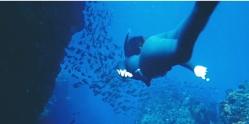 16年後、海に潜っている成美
