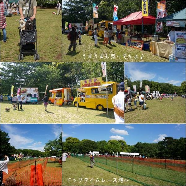 公園イベント6