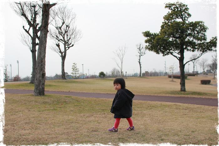 IMG_8z646.jpg