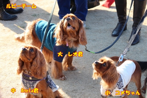 0103新年会