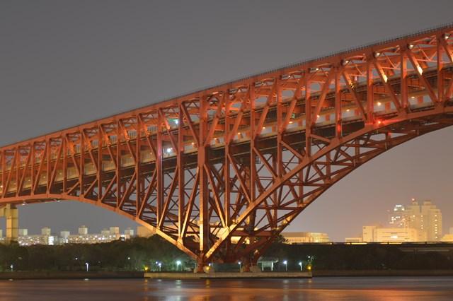 s-2014,02,16 メタセコイヤと南港夜景 100