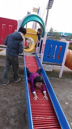hatumou 041