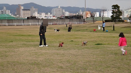 hatumou 022