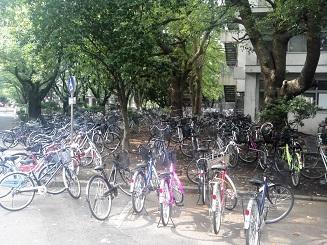 千葉大自転車2013
