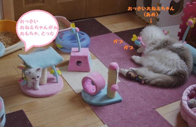 おもちゃIMGP2889
