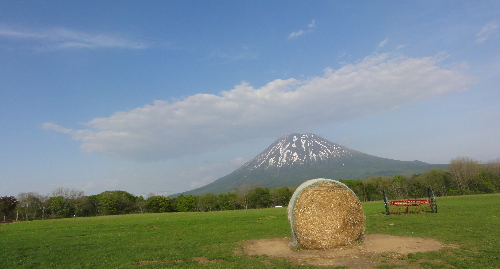 5-ザ ニセコ
