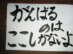 2013_0422ココバニブログ0016