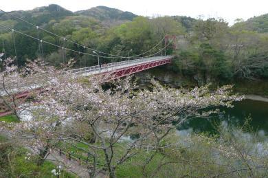 桜淵公園16