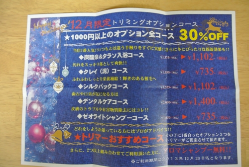 DSC_5295_01.jpg
