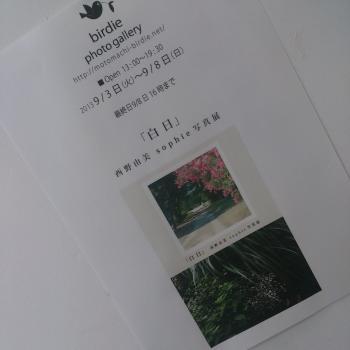 nishino-1.jpg