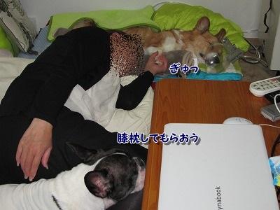 一緒 (2)