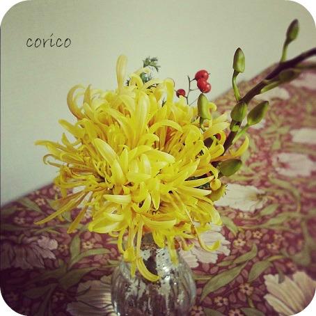 mamu-yellow.jpg
