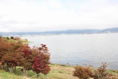 shuku-IMG_4491.jpg
