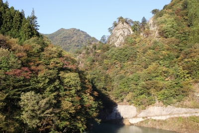 shuku-IMG_4540.jpg
