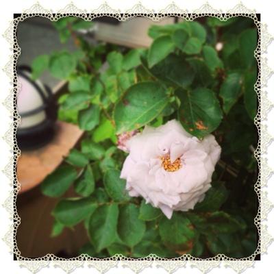 fc2blog_20130522222117aec.jpg
