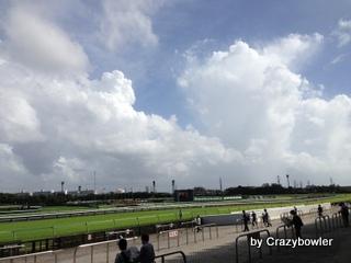 中山競馬場 2013年9月15日