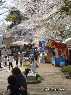 高崎公園2013年4月
