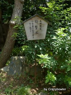 水稲荷神社 大田道灌の駒繋松