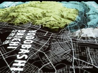 淀橋台地 東京の微地形模型 TOPOGRAPHY MODEL TOKYO