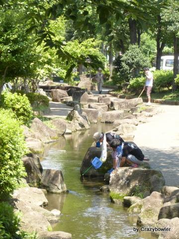 見沼代親水公園 夏2013