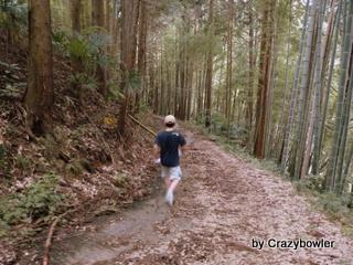 軍刀利神社 旧参道を歩く