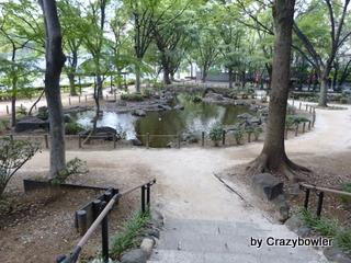 増上寺裏の池