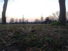 舎人公園4
