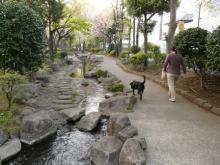 舎人親水公園