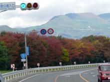 国道17号の紅葉