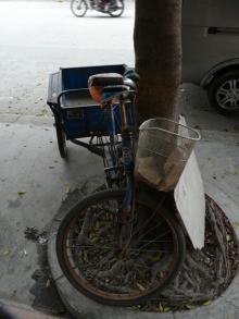 Crazybowlerの生涯…学習!-三輪車