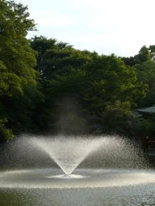 生涯学習!by Crazybowler-井の頭公園