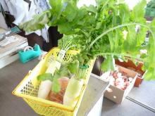 生涯学習!by Crazybowler-井土上農産物直売所